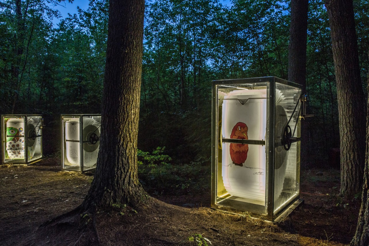 Project, cabins and day in the life at Beam Camp in Strafford, NH